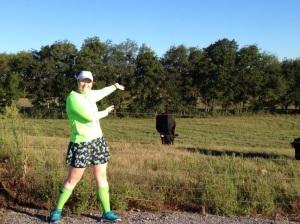 blog cow